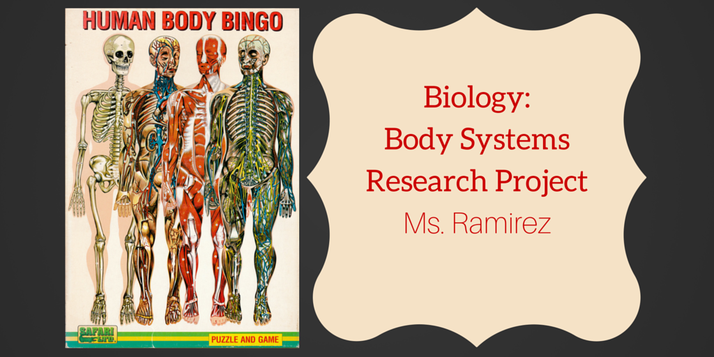 Biology- Body Systems Research Banner