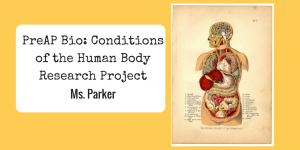 PreAP Bio- Conditions of the Human Body Research Project Banner