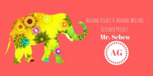 ag-animal-rights-animal-welfare